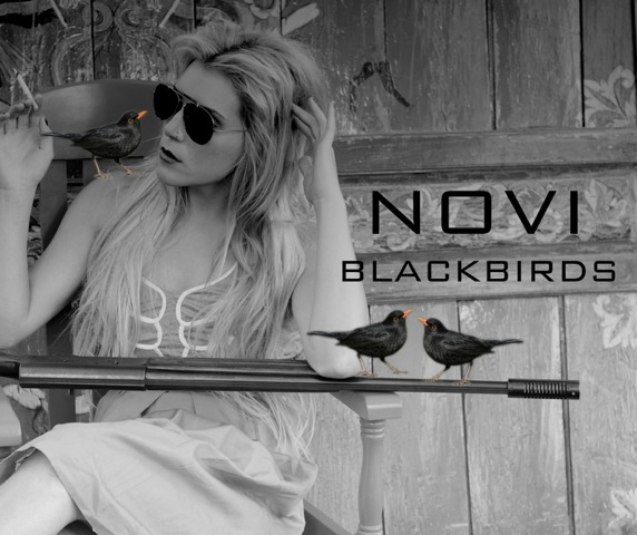 NOVI BLACKBIRDS CD COVER